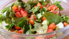 Semizotu Salatası Tarifi – Salata Tarifleri