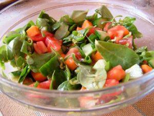semizotu-salatasi